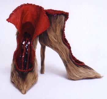 displaced shoe copy