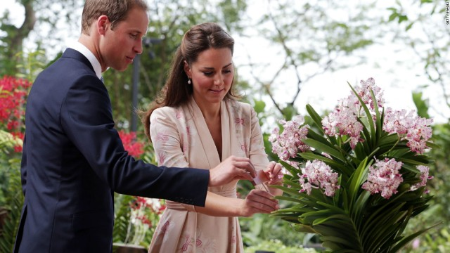 120911101657-william-catherine-orchid-horizontal-large-gallery
