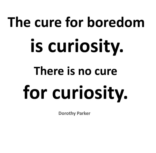 the-cure-for-boredom-is-curiosity-there-is-no-cure-for-curiosity